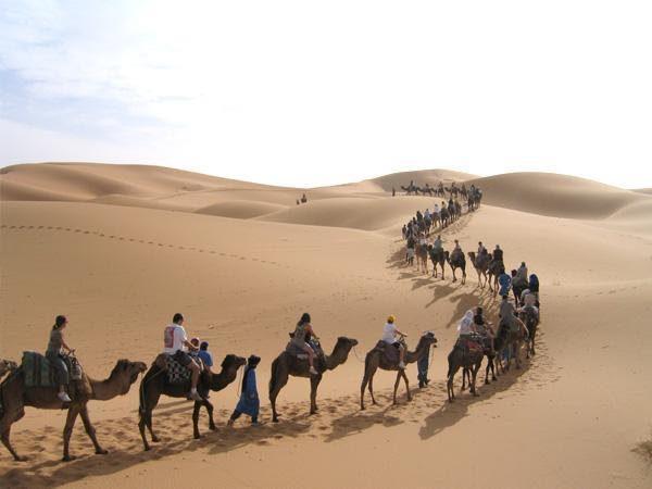 Sahara Tours Morocco