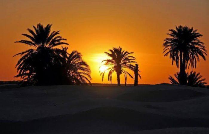 Merzouga Camel Trekking Tour