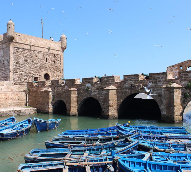 Marrakech Essaouira Day Trip