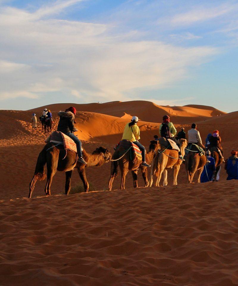 Fes Marrakech Desert Tour